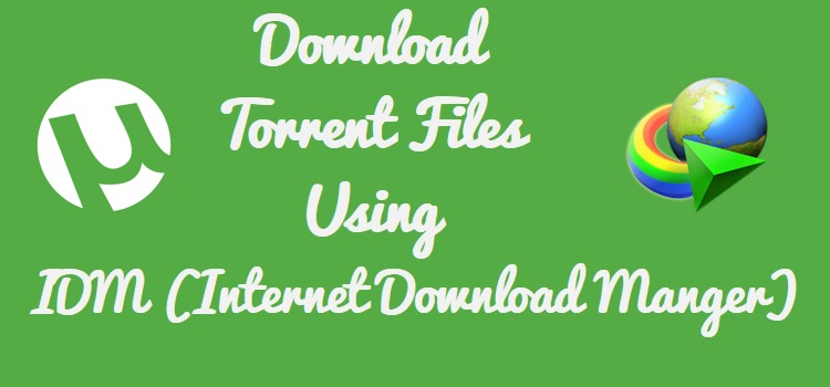 convert torrent file into idm free