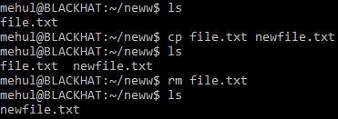 Renaming Files cp command