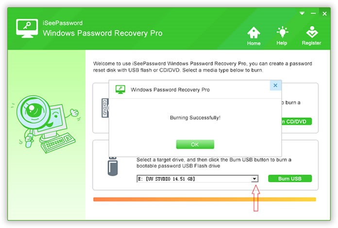 Windows Password Recovery Pro Burning Successful