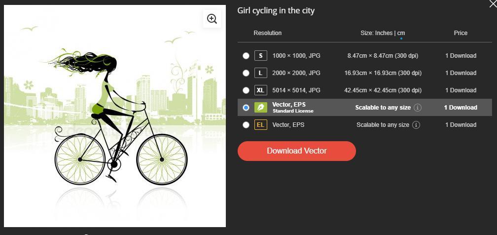 Depositphotos Vector Download